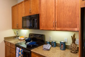 Two Bedroom Apartments for Rent in Houston, TX - Model Kitchen (2)